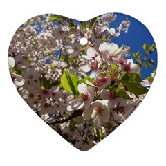 Cherry Blossoms Heart Ornament (two Sides) by DmitrysTravels