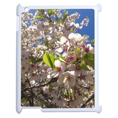 Cherry Blossoms Apple Ipad 2 Case (white) by DmitrysTravels