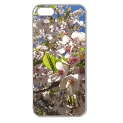 Cherry Blossoms Apple Seamless Iphone 5 Case (clear)