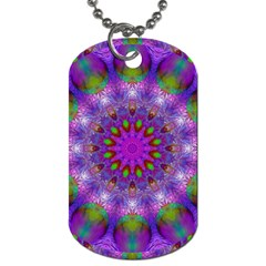 Rainbow At Dusk, Abstract Star Of Light Dog Tag (two Sided)  by DianeClancy