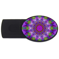 Rainbow At Dusk, Abstract Star Of Light 2gb Usb Flash Drive (oval) by DianeClancy