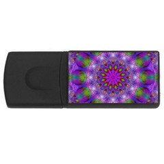 Rainbow At Dusk, Abstract Star Of Light 4gb Usb Flash Drive (rectangle) by DianeClancy