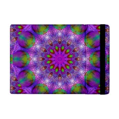 Rainbow At Dusk, Abstract Star Of Light Apple Ipad Mini Flip Case by DianeClancy