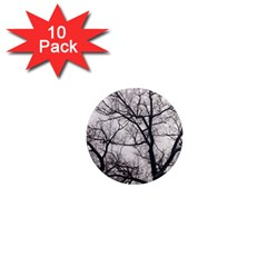 Tree 1  Mini Button Magnet (10 Pack) by DmitrysTravels