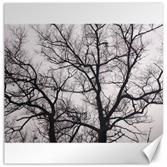 Tree Canvas 20  X 20  (unframed) by DmitrysTravels