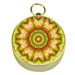 Red Green Apples Mandala Gold Compass by Zandiepants