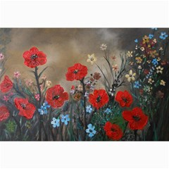 Poppy Garden Canvas 20  X 30  (unframed) by rokinronda