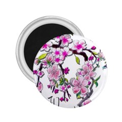 Cherry Bloom Spring 2 25  Button Magnet