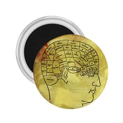 Brain Map 2 25  Button Magnet by StuffOrSomething