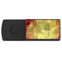 Brain Map 4gb Usb Flash Drive (rectangle) by StuffOrSomething