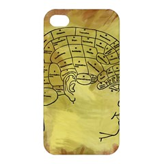 Brain Map Apple Iphone 4/4s Hardshell Case by StuffOrSomething