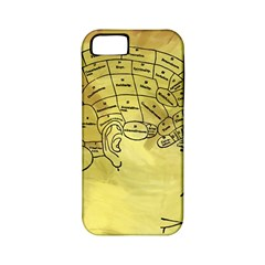 Brain Map Apple Iphone 5 Classic Hardshell Case (pc+silicone) by StuffOrSomething