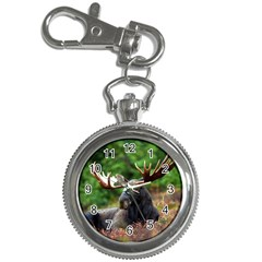 Majestic Moose Key Chain Watch by StuffOrSomething