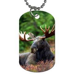 Majestic Moose Dog Tag (one Sided) by StuffOrSomething