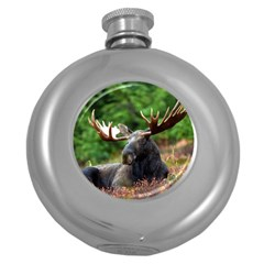 Majestic Moose Hip Flask (round) by StuffOrSomething