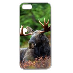 Majestic Moose Apple Seamless Iphone 5 Case (clear) by StuffOrSomething