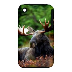Majestic Moose Apple Iphone 3g/3gs Hardshell Case (pc+silicone) by StuffOrSomething