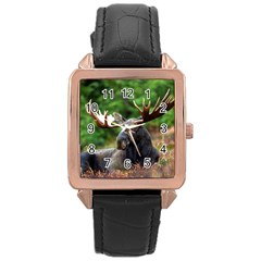 Majestic Moose Rose Gold Leather Watch  by StuffOrSomething
