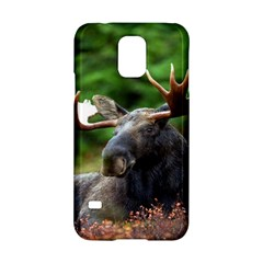 Majestic Moose Samsung Galaxy S5 Hardshell Case  by StuffOrSomething