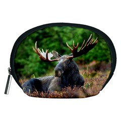 Majestic Moose Accessories Pouch (medium) by StuffOrSomething