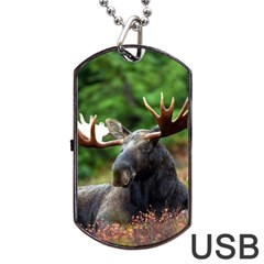 Majestic Moose Dog Tag Usb Flash (two Sides) by StuffOrSomething