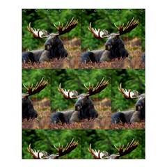 Majestic Moose Shower Curtain 60  X 72  (medium) by StuffOrSomething