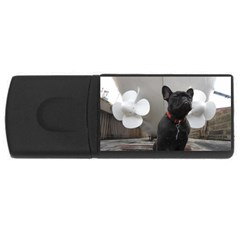 French Bulldog 4gb Usb Flash Drive (rectangle) by StuffOrSomething