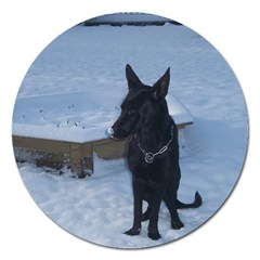 Snowy Gsd Magnet 5  (round) by StuffOrSomething