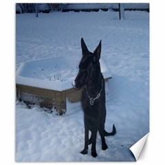 Snowy Gsd Canvas 8  X 10  (unframed)
