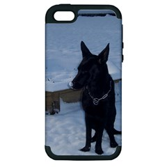 Snowy Gsd Apple Iphone 5 Hardshell Case (pc+silicone) by StuffOrSomething