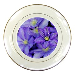 Purple Wildflowers For Fms Porcelain Display Plate by FunWithFibro