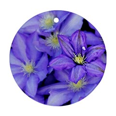 Purple Wildflowers For Fms Round Ornament (two Sides) by FunWithFibro