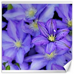 Purple Wildflowers For Fms Canvas 16  X 16  (unframed) by FunWithFibro