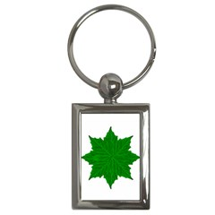 Decorative Ornament Isolated Plants Key Chain (rectangle) by dflcprints