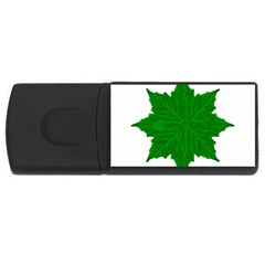 Decorative Ornament Isolated Plants 4gb Usb Flash Drive (rectangle)