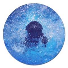 French Bulldog Swimming Magnet 5  (round) by StuffOrSomething