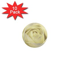 Cream Rose 1  Mini Button Magnet (10 Pack) by Colorfulart23
