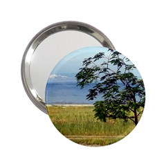 Sea Of Galilee Handbag Mirror (2 25 ) by AlfredFoxArt