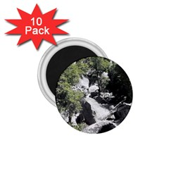 Yosemite National Park 1 75  Magnet (10 Pack)  by LokisStuffnMore