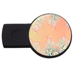 Peach Spring Frost On Flowers Fractal 4gb Usb Flash Drive (round) by Artist4God