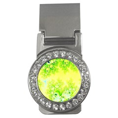 Sunny Spring Frost Fractal Money Clip (cz) by Artist4God