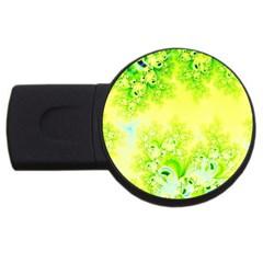 Sunny Spring Frost Fractal 4gb Usb Flash Drive (round) by Artist4God