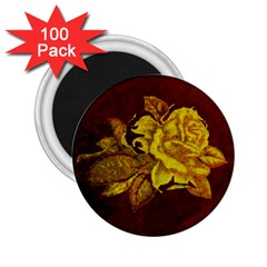Rose 2 25  Button Magnet (100 Pack) by ankasdesigns