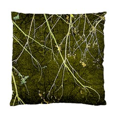 Wild Nature Collage Print Cushion Case (two Sided)  by dflcprints