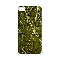 Wild Nature Collage Print Apple Iphone 4 Case (white) by dflcprints