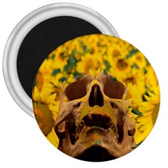 Sunflowers 3  Button Magnet by icarusismartdesigns
