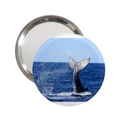 Humpback Whale Tail 2 Handbag Mirror (2 25 ) by centralcharms1