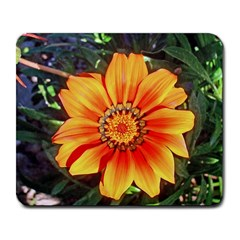 Flower In A Parking Lot Large Mouse Pad (rectangle) by sirhowardlee