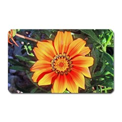 Flower In A Parking Lot Magnet (rectangular) by sirhowardlee