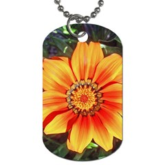 Flower In A Parking Lot Dog Tag (two Sided)  by sirhowardlee